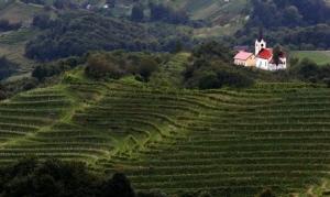 Slowenien, Haloze Zagorje