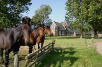 Kaimiško stiliaus namas , Warfstermolen, Lauwersmee, - Friesland Nyderlandai