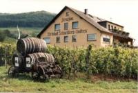 penzión , 56820 Mesenich, Mosel-Saar Rheinland-Pfalz Nemecko