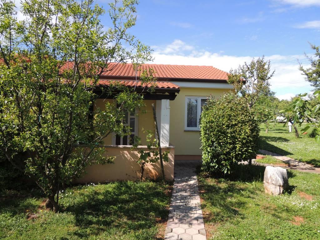 Atostogoms nuomojami namai Bungalow lAVANDA  fur 2 - 4 Personen in ruhige Lage mit Salzwasserpool, Porec, Porec Istrien Nordküste Kroatija