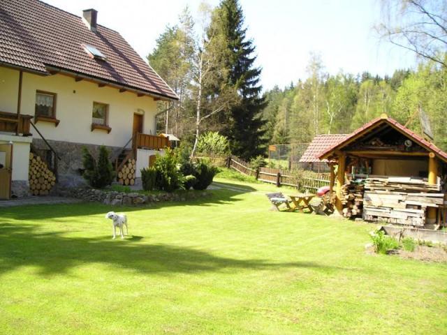 ferienhaus in rotava erzgebirge mit hund erlaubt