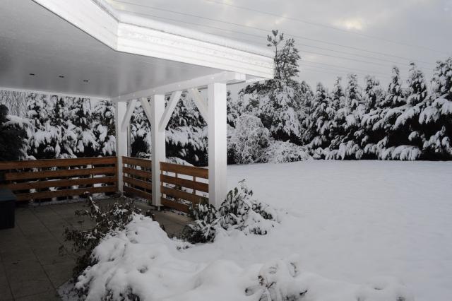 Ferienhaus in perniek bei wismar mecklenburgische seenplatte for Ferienhaus juist mit hund