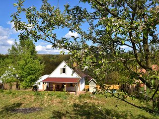dom letniskowy Comfortable holiday home in a secluded valley. Tune into nature and the seasons., Hetvehely, Orfü Südtransdanubien Wegry